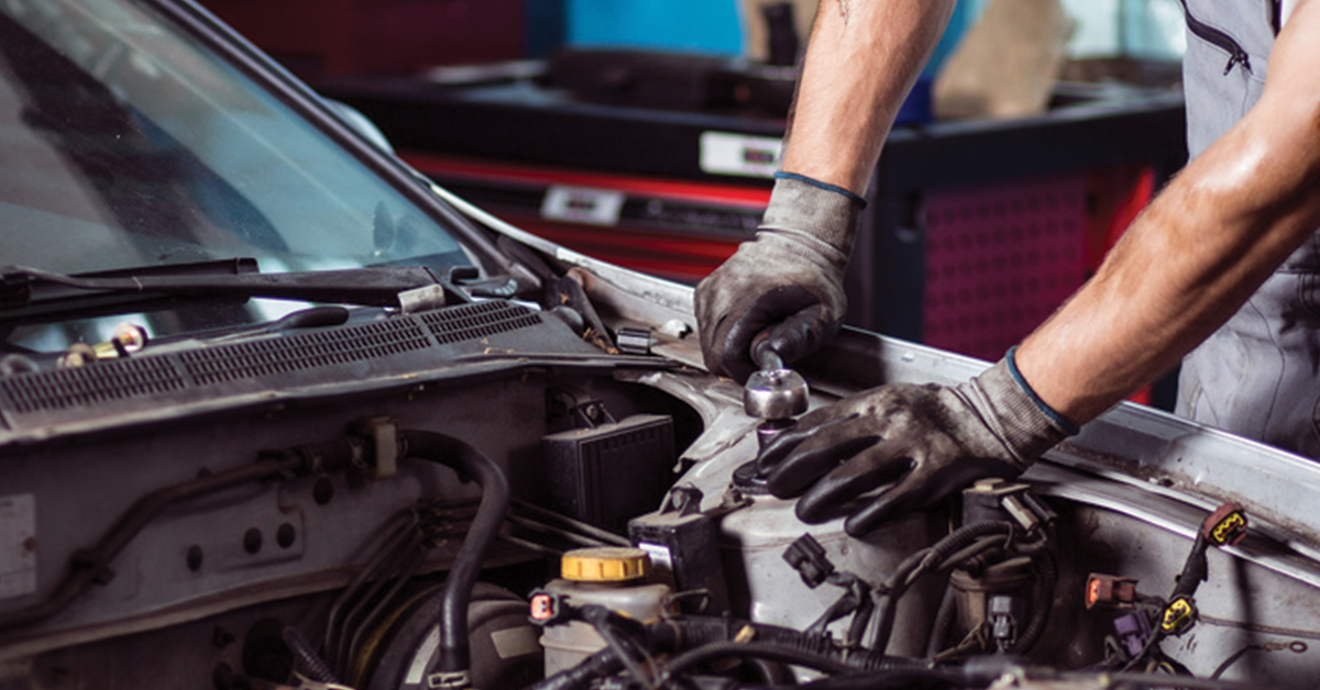 Professional Car  U0026 Truck Maintenance